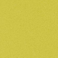 ROMA colour: lime green (VP0906)