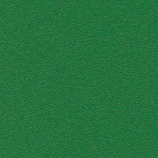 ROMA colour: dark green (VP0908)