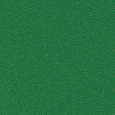 ROMA colour: dark green (VP0908)
